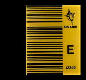Medium size custom BAi barcode decal